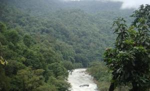 western ghats rivers