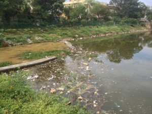 HVhalli lake waste (2)