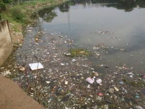 HVhalli lake waste (3)