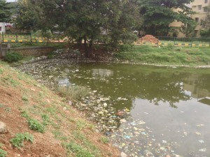 HVhalli lake waste